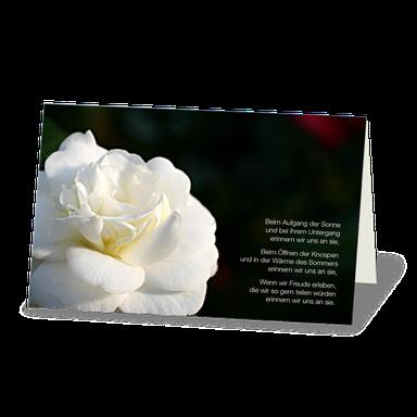 TRauerdanksagung mit wunderschöner weißer Rose. Rosenblüte vor dunklem Hintergrund und einem Gedicht.