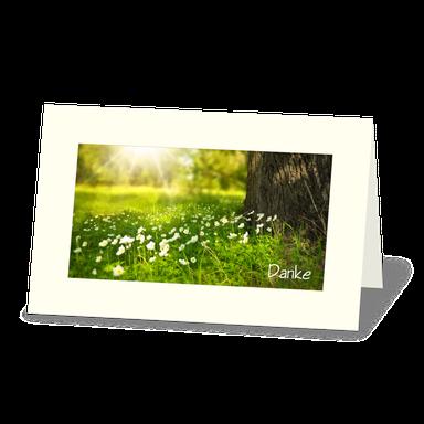 Trauerdanksagung mit Baumstamm und Blumenwiese mit Gänseblümchen im Sonnenlicht.