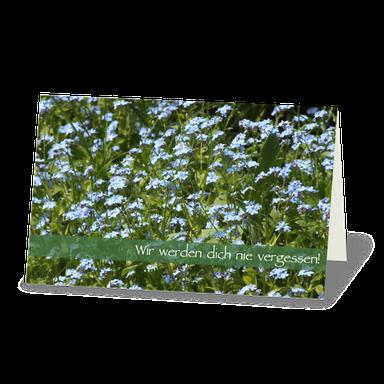 Trauerkarte Wiese mit Vergißmeinnicht, zart hellblaue Blüten.