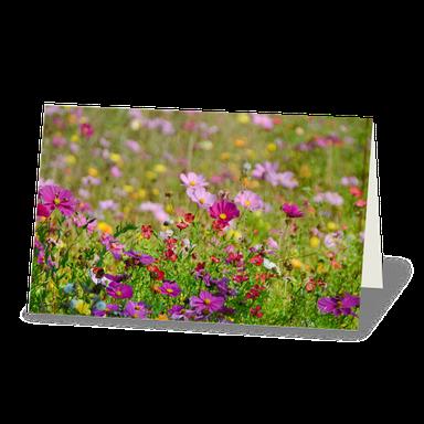 Trauerkarte bunte Blumenwiese mit violette Blüten.