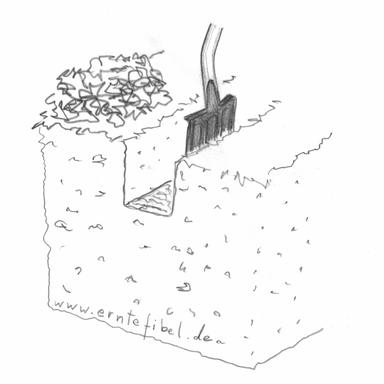 Tiefkulturbeet im Garten