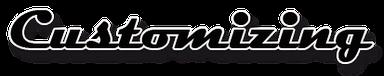 Switsh Customs, Switshcustoms, Motorrad Werkstatt, Motorradwerkstatt, BMW, TRIUMPH, KAWASAKI, SUZUKI, YAMAHA, HONDA, DUCATI, MOTO GUZZI, APRILIA, HARLEY DAVIDSON, BUELL, KTM, Indian