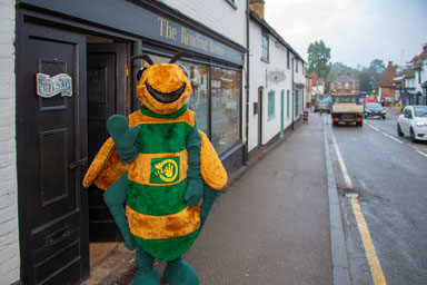 billy the bee outside the reading rooms pub, run by local microbrewery in wheathampstead village hertfordshire