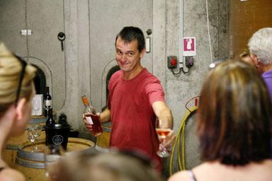 accueil en vignoble dans l'Aude
