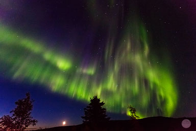 "Bild: aurora borealis seen from ""Gobblers Knob"" on the Dalton Highway in Alaska, ""green curtain""; www.2u-pictureworld.de"