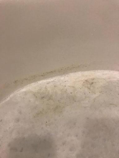 風呂釜洗浄マイスター