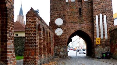 Neubrandenburg: historische/s Stadtmauer/Stadttor