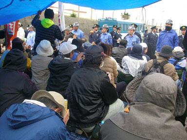 キャンプ・シュワブゲート前の鉄柵を占拠して闘う(1月13日)