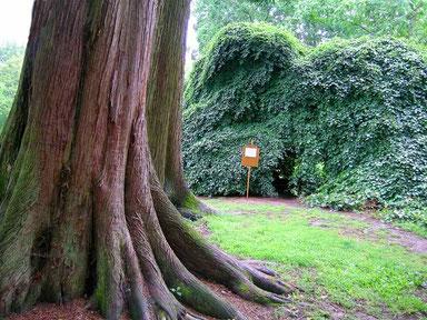 chateau-arboretum-harcourt-visite-tourisme-eure-27