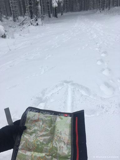 Der Weg zur Fuchskaute