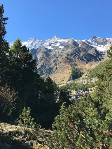La vue sur les montagnes Valaisan du parc d'accrobranche