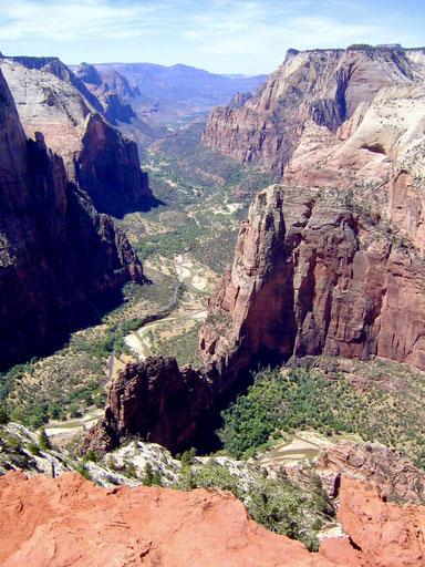 Blick von Observation Point auf Angels Landing und den Canyon