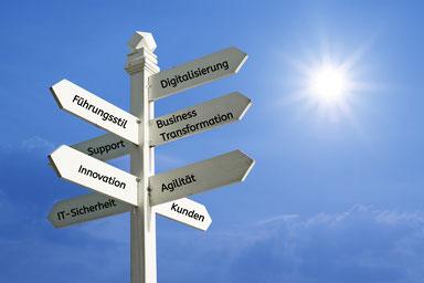 Zukunftsentwicklung für Führungskräfte - Wie ich mich in einer distruptiven Welt als Führungskraft erfolgreich aufstellen kann