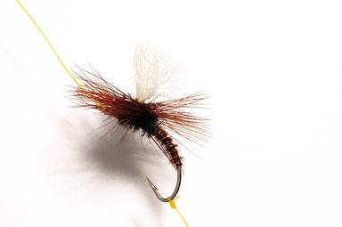 NZD versione 1: il tip che lega la ninfa viene fissato alla curvatura dell'amo della Klinkhamer con un Clinch Knot. L'uso di un filo colorato serve a rendere più comprensibile l'immagine, ma certo non è consigliato in azione di pesca