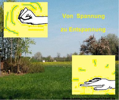 """Ein Foto im Hintergrund mit einer Feldlandschaft im Frühling und im Vordergrund zwei gemalte Hände eine angespannt, die andere offen und die Worte """" Von Spannung zu Entspannung"""""""