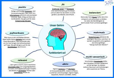 Gehirn Lernen Mathe Dyskalkulie Lernforschung Hirnforschung
