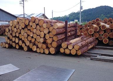 木の家で地球温暖化対策