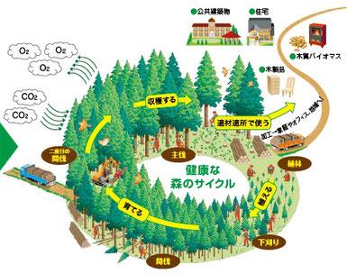 埼玉県木の家づくりで環境問題対策工務店
