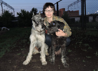 Harley (Gloris Harley Devidson) and his son Gavrusha (Libens SS Genesis), 5 month old, Moscow, Russia, 15/06/2015