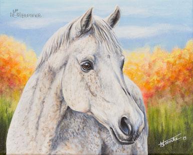 24x18 Ein Pferdekopf klein