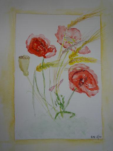 Sommerblumen Aug. 2014