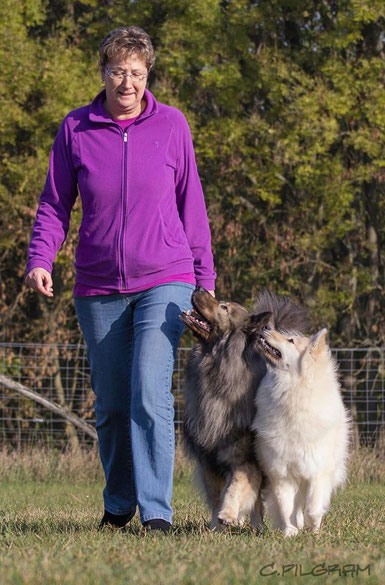 Eurasier vom Bärenstern Teddy Obedience Basilea vom Schmetterlingsgarten Fuß laufen
