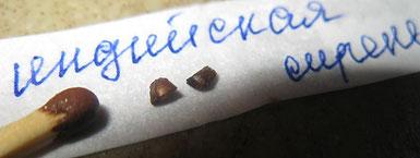 Лагерстремия, индийская сирень. Замачивать в стимуляторе 12-24 часа, посев в универсальный грунт поверхностно и присыпать слегка вермикулитом или песком пополам с грунтом.   t 25-28 тепла. Всходы через пару недель.