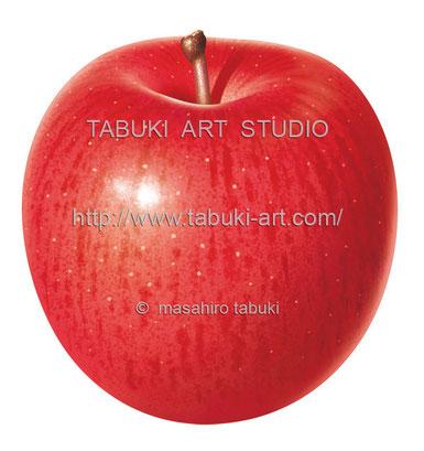 リンゴ丸 RD10625
