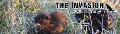 The Invasion-A Coypumentary