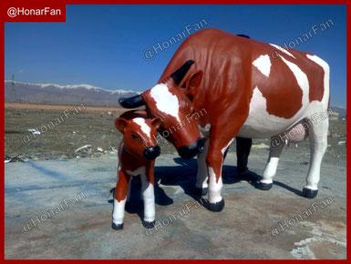 Cow Maket ساخت مجسمه حیوانات و ماکت حیوانات ماکت گاو شیری انواع نژاد گاو و بهترین نژاد گاو شیری و گاو گوشتی ایران ، دامپروری ، دامپزشک تخصصی گاو مجسمه و ماکت گوسفند