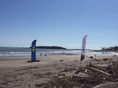 前線と台風の影響でビーチには流木が凄かった!