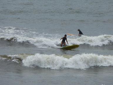 日置市サーフィン協会かいちょ~~!いろんな顔を持ってます。