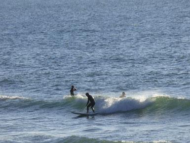 これもZNカメラ小僧作。波を見る練習になるからね~
