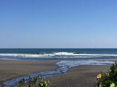 海を見ながらランチでした。