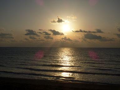 夕日が顔出してくれました~