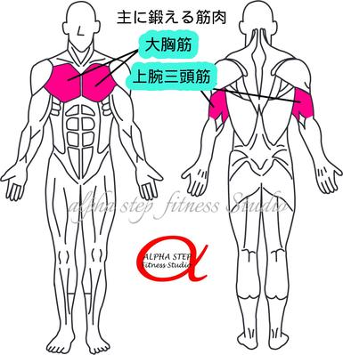 チェストプレス(大胸筋・上腕三頭筋)