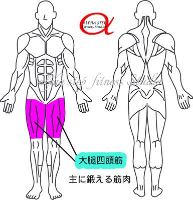 レッグエクステンション(大腿四頭筋)
