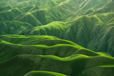 全身シャンプーアウロラフレア原料イメージ自然の恵み画像