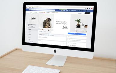 créer et animer une page professionnelle facebook