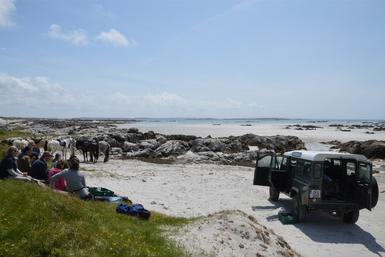 Das verdiente Picknick mit Blick aufs Meer.