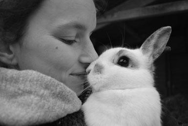 Vakantieopvang; hamster; hamsters; konijnen: konijn; gerbil; gerbils; adopteren; ter adoptie; knaagdierenopvang; konijnenopvang; Het Knaagtandje; knaagdieren- en konijnenopvang; Geraardsbergen; België; knagers