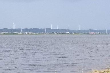 利根川沿いの風車
