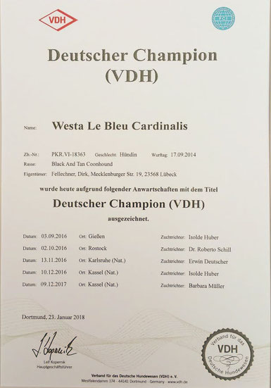 German Champion VDH