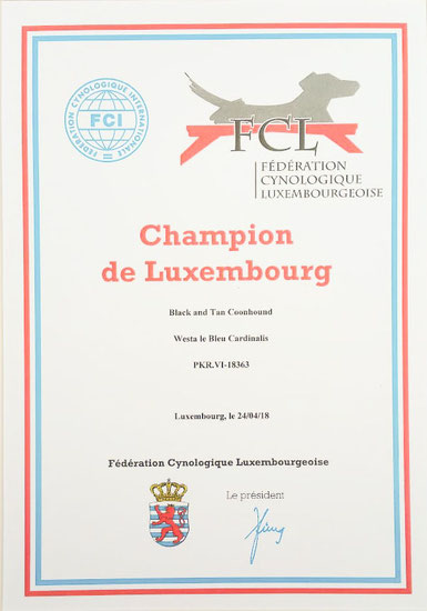Luxembourg Champion FCL