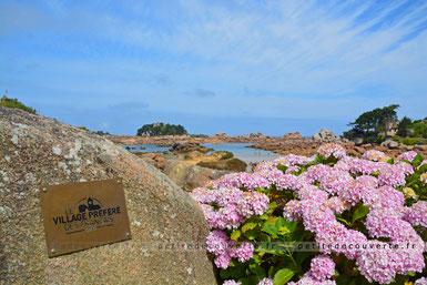 ploumanac'h  Côte de granit rose bretagne