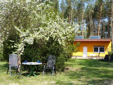 ferienhausinbrandenburg ferienhaus in brandenburg urlaub am see ferienhaus am see pension bad freienwalde reha bad freienwalde