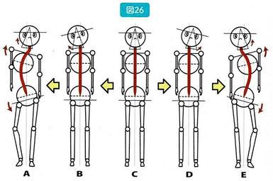 噛み締めによる肩、骨盤の歪み