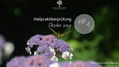 Heilpraktikerprüfung Oktober 2019 Heilpraktikerprüfung März 2020  Lösungen