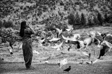 ꧁ ©Maryam Ashrafi ꧂
