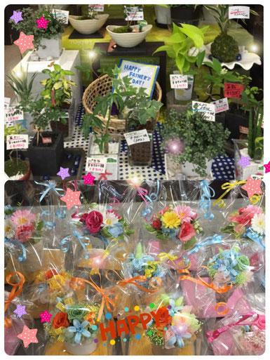 アルプラザ鯖江 特招会 花ひろ お買得 SALE プリザーブド アートフラワー 観葉植物
